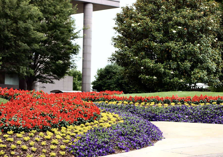 What Should I Look For In A Commercial Landscaping