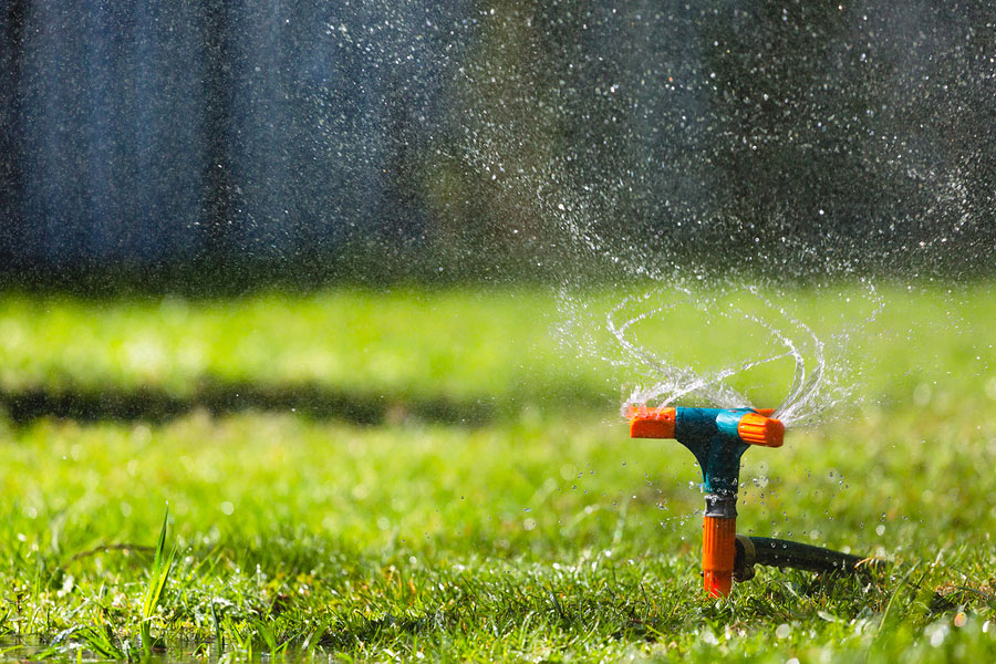 Lower Business Landscape Maintenance by Saving Water