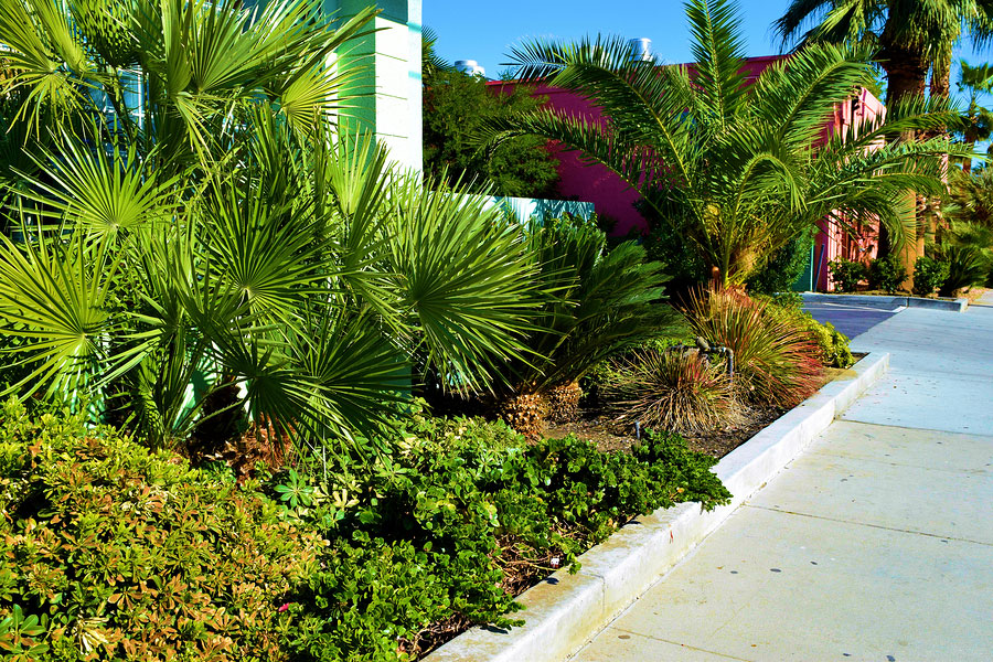 3 Crucial Characteristics of the Right Commercial Landscaping Company