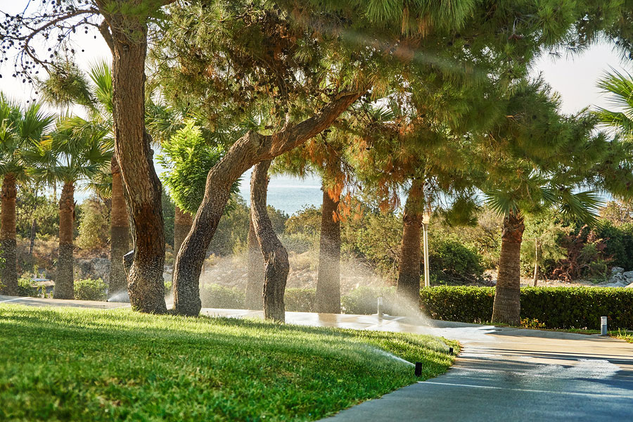 Irrigation Mistakes Could be Costing You More Than You Think!