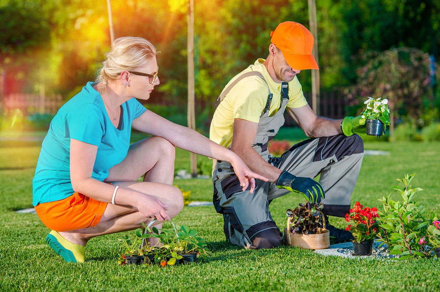 Tips Landscape Professionals Recommend that Ensure an Effective Working Relationship with Clients