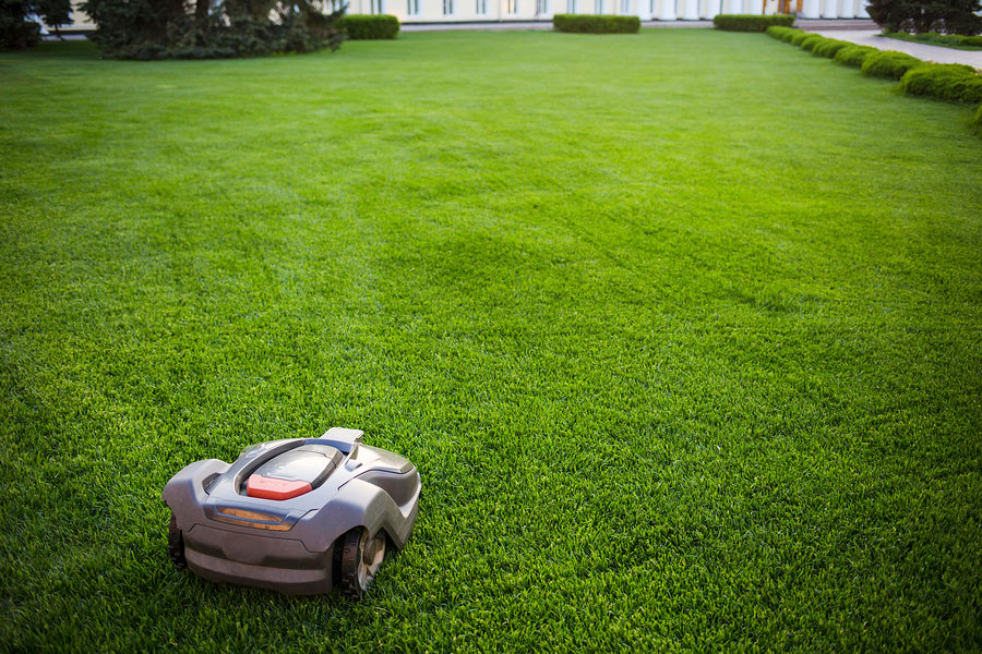 Are Robotic Lawn Mowers The Way Of The Future Or Just A Fad?