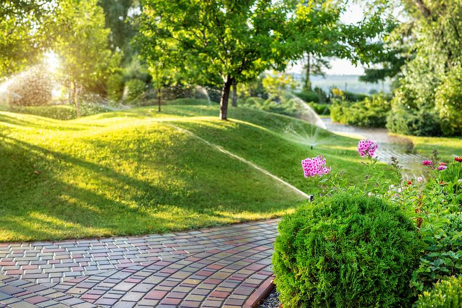 Carolina Grounds - What Type of Irrigation System Should You Use